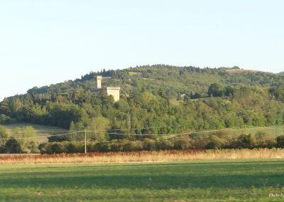 Castello sullo sfondo della collina verdeggiante