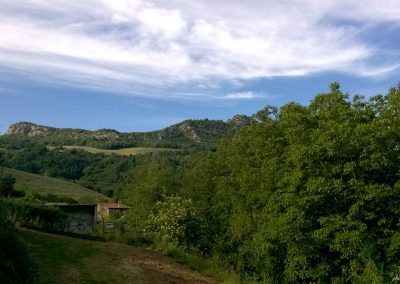 Valle del Lamone