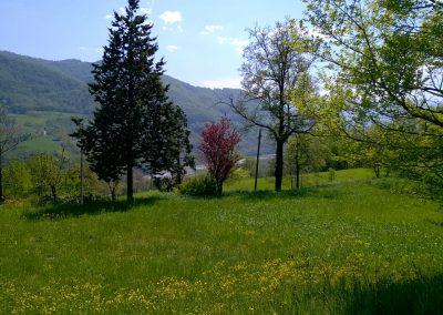 Panorama con vista sul Panaro